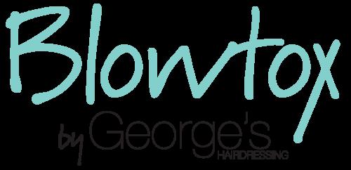 Blowtox Logo_RGB